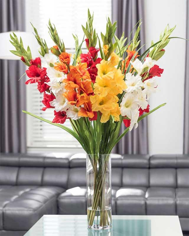 Những loại hoa nên để trong nhà ngày tết - hoa lay ơn