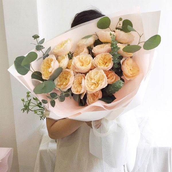 3 loại hoa hồng nhập khẩu được ưa chuộng nhất