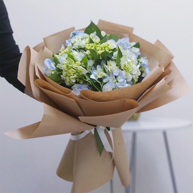 giá hoa cẩm tú cầu đà lạt